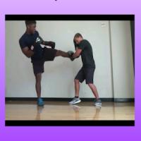 Muay Thai Techniques Learn MMA