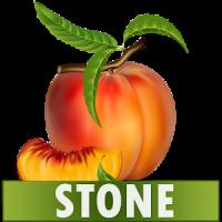Stone Diet Renal Gall Bladder Kidney Gallbladder