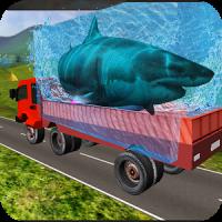 Transport Truck Shark Aquarium