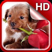 Puppies Live Wallpaper HD