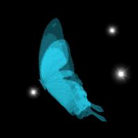 Schmetterlinge Fantasie Live