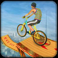 Fearless Bicycle Stunt BMX Rider 2019