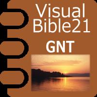 VB21 GNT or GNB/TEV