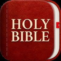 Light Bible