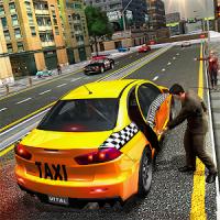 Pro Taxi Driver