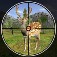 Forest Deer Hunting Season