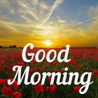 Good Morning Images & Messages for Dp And Status