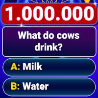 Millionaire 2020