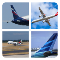 Guess Airlines in the World