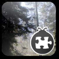 Lightning Bug - Forest Pack