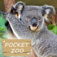 Pocket Zoo Premium