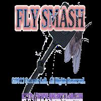 Fly Smash