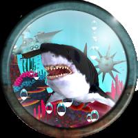 SHARK Z