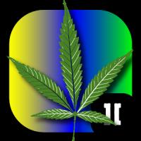 Stoner Slots ][ Marijuana Love