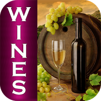 Top Wines of the World