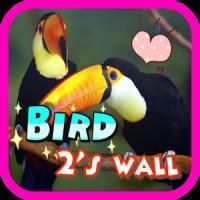 Bird 2's wall