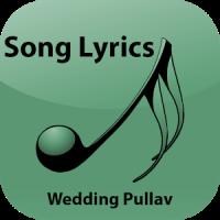 Hindi Lyrics of Wedding Pullav