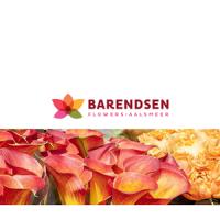 Barendsen Flower Shop