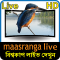 Maasranga TV Live HD