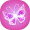 Glitter Butterfly Wallpaper