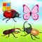 Insects Cards (Learn Languages)