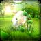 Forest GO LauncherEX Theme