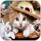 Cat Picture HD Images